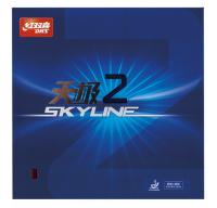 DHS Skyline 2