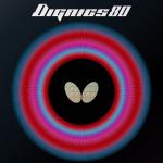 DIGNICS 80